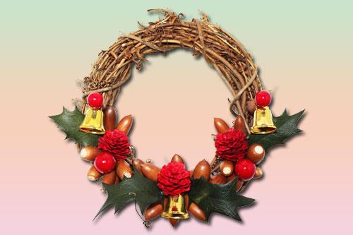 クリスマスに飾られる植物の名前を調査!飾りの意 …